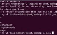 Hadoop启动Yarn进行资源调度